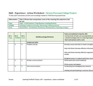 image of my skill-experience-action worksheet
