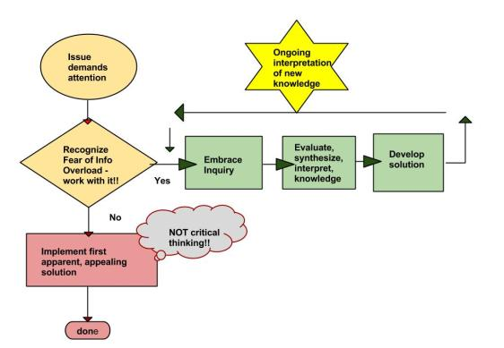 Flow chart of inquiry while acknowledging fear of information overload